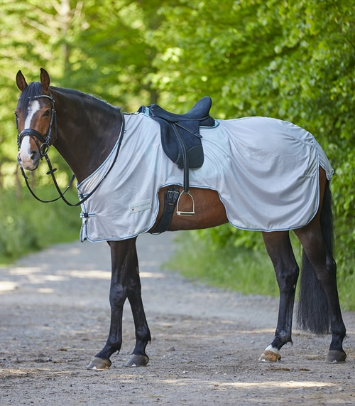 Waldhausen Anti-fly Riding out Sheet Protect
