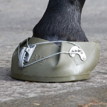 Shires Equiboot