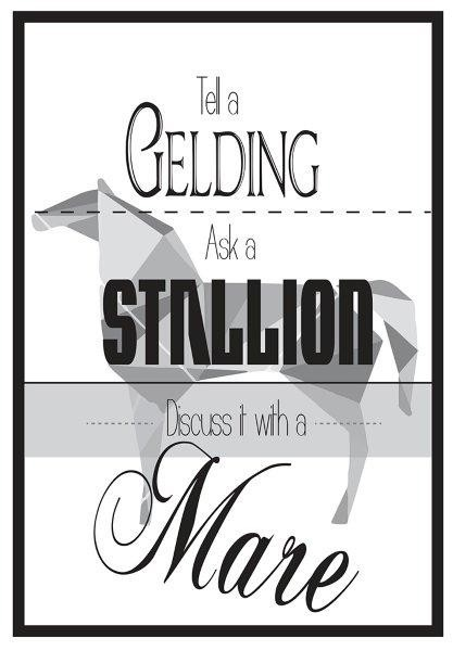 QHP Metalskilt med teksten 'Tell a Gelding, Ask a Stallion, Discuss it with a Mare'