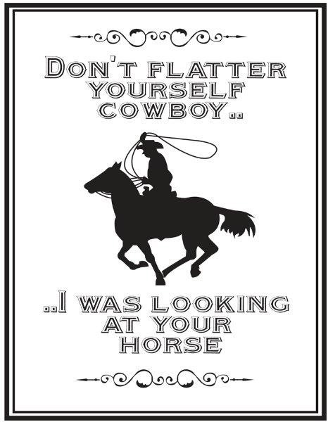 QHP Metalskilt 'Don't flatter yourself cowboy..  .. I was looking at your horse'