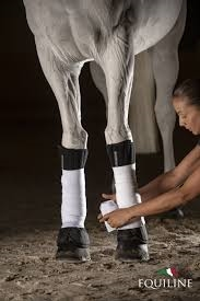 Equiline Bandage Liners Xaviar